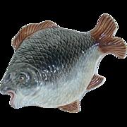 Majolica Fish Plate/Tray – Ca. 1890