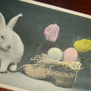 Early Real Photo Easter Postcard White Bunny With Tulips and Eggs in Straw Shoe Basket