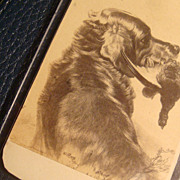 SALE 1864 CDV Hunting Dog With Game Signed Dated Cabinet Card