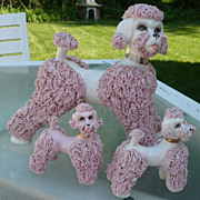 Set  3 Spaghetti Poodles Kreiss  Huge and 2 Babies
