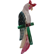 Lucite Parrot Pin