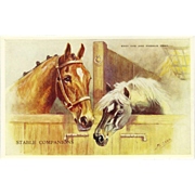 Two Horses Vintage Postcard by Mabel Gear - Stable Companions