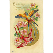 Embossed 1910 Vintage Birthday Postcard with Two Birds and Flowers
