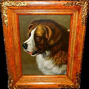 Saint Bernard Dog Vintage 1902 Print in Ornate Oak Frame