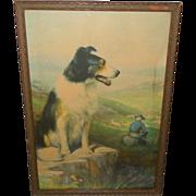 R. Atkinson Fox Vintage Print of On Guard - Collie Guarding Sheep