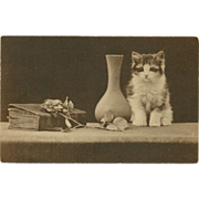 Real Photo Postcard of Kitten with Book and Vase