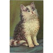 Vintage Artist Signed Postcard of Seated Kitten