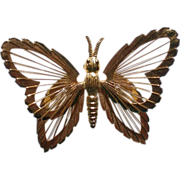 SALE Wire Wing Butterfly Pin