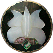 SALE Mexican Silver Abalone Shell Pin / Pendant