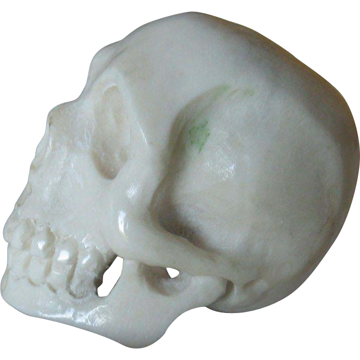 Deer Antler Netsuke - Human Skull