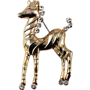 Cute larger crystal rhinestone trim Pony brooch
