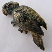 Victorian Enameled Brass Parrot Bird Pin Brooch