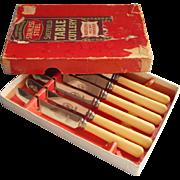 Dessert Knives Celluloid Handles Original Box Vintage ca 1920 Set 6