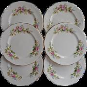 Moss Rose Royal Albert Bread Plates Vintage Bone China Set 6