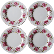 Princess Roses Queen Anne Plates Vintage Bone China 4 Tea