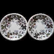 Flow Black Plates Antique Transferware Pottery China Lustre Flowers