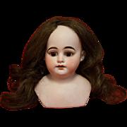 SOLD Antique Bisque Armand Marseille 1894 Doll Head
