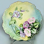 Antique Limoges Hand Painted Hobbyist Plate