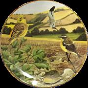 COALPORT Plate 'Birds' By Ian Lewington 1987