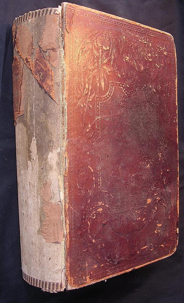 The Polar & Tropical Worlds - Dr. G. Hartwig -1876 First Edition