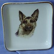 1940s German Shepherd dog painting Geigenmuller Germany