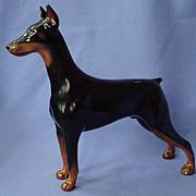 SALE 1950s Royal Doulton Doberman Pinscher dog  HN 2645
