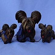 SALE vintage  Skye / Silky terrier Briard  mom and pups