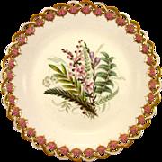 ROYAL WORCESTER c1869 Australian wild flowers antique plate #1