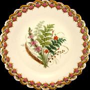 SOLD ROYAL WORCESTER c1869 Australian wild flowers antique plate #7
