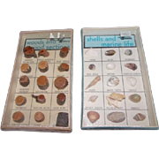 2 sealed Collections Scott Scientific Fort Collins Co. Wood & Shells/Marine Life