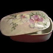 Victorian T & V Limoges Hand-Painted Porcelain Match Striker and Box