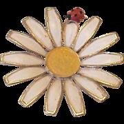 Weiss Daisy Flower Ladybug Pin