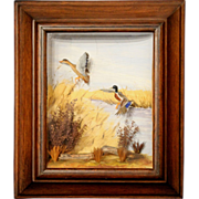 Framed Sporting Diorama of Mallard Ducks by Runar G. Rodell circa 1960's