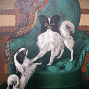 Antique VICTORIAN Belgian Litho Print of Chin DOGS 19th C Century ADORABLE!