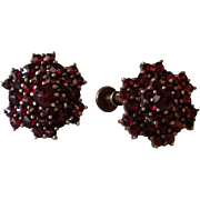 SALE Antique Bohemian Garnet and 22ct Gold Starburst Screw Back Earrings c1900