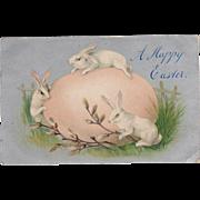 Vintage, Easter Postcard - Large Egg & 3 Bunnies