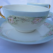 Hand Painted Wild Roses Cup & Saucer Set
