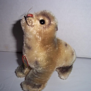 """SALE Steiff Seal with Tag """"Robbie"""""""