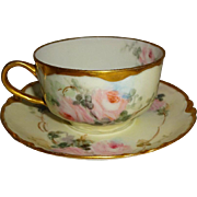 Stunning - Haviland - Limoges - France - French Porcelain - Tea Cup - Saucer - Hand Painted -