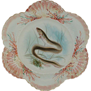 Bodley - Burslem - England - Fish Plate - Common Eel - Sea Shell Border - Artist Signed - Numbered - Museum Quality - Only Fine Lines