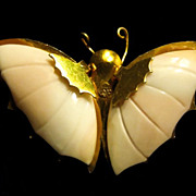 Butterfly Brooch - Pink Wings