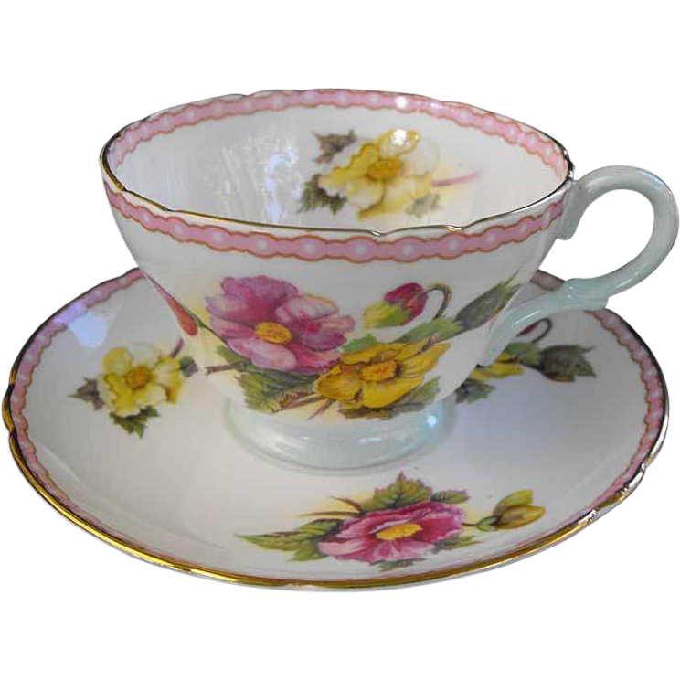 Shelley: Cup and Saucer begonia