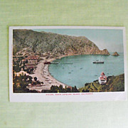 REDUCED Postcard: Catalina Island, Ca.  Circa - early 20th