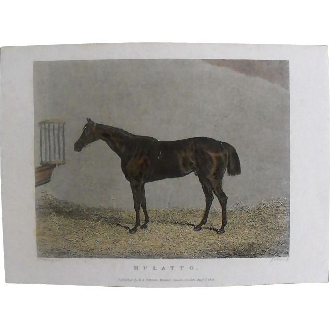"Lithograph Print of J Weble engraving of horse "" Mulatto"" from 1828: circa 1872"