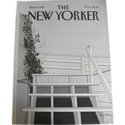 SOLD New Yorker Magazine Cover: June 8, 1981