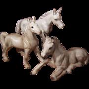 Set of Three White Porcelain Horses Numbered