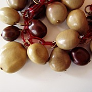 Vintage Celluloid and Nuts Necklace