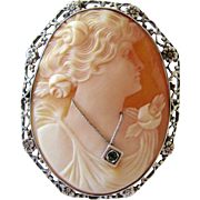 REDUCED Vintage Cameo Carved Shell Habille