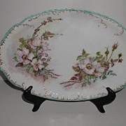 REDUCED Absolutely Exquisite Haviland Limoges France  Oval Platter  Hand Painted Wild Pink ...