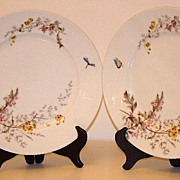 "Charles Field Haviland Gerard Dufraisseix & Morel Limoges Meadow Visitor 9 1/2"" Dinner Plate"